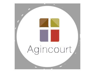 AgincourtCase2